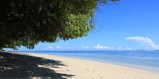Beach at Bunaken