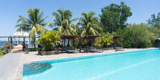 Zwmbad voor palmbomen bij Thalassa Manado