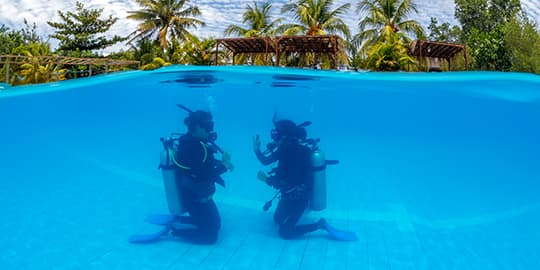 Take your PADI Course with the best diving school in North Sulawesi